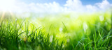 art abstract spring background or summer background with fresh g - 134445644