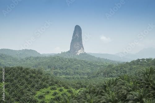 Foto op Aluminium Khaki ilha tropical