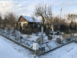 Allotments in snowy winter
