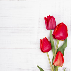 red tulip bouquet on white wooden background, copy space