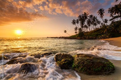 Fototapeta Sunset on the beach with coconut palms.