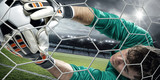 Goalkeeper catches the ball in the stadium - 134584229