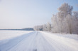 Winter russian forest snow road