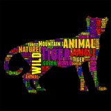 Tiger Typography word cloud colorful Vector illustration
