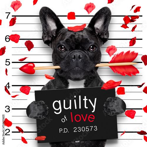 Poster mugshot dog on valentines