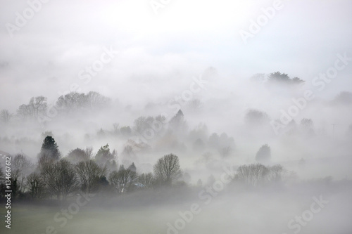 Mist - 134667612
