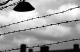 barbed wire to demarcate the prison camp - 134686405
