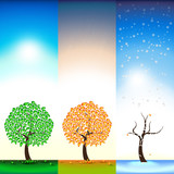 Three seasons. Summer. Autumn. Winter. Tree. Falling Leaves, snow, rain. Illustration.