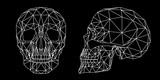 Teschio umano vista frontale e laterale, illustrazione geometrica di linee bianche sullo sfondo nero