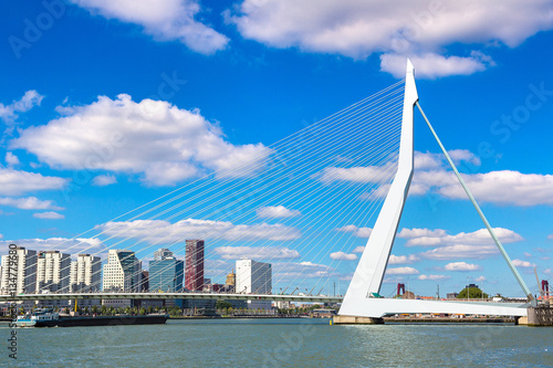 Fotobehang Rotterdam Erasmus bridge in Rotterdam
