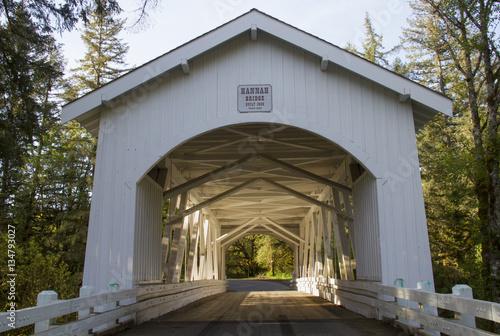 Poster Hannah Bridge