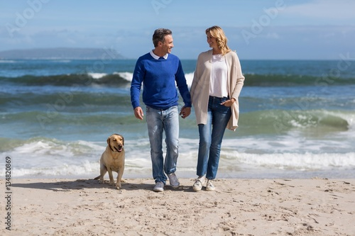 Mature couple walking on the beach with their dog
