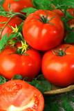Big red fresh tomatoes