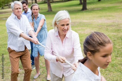 Poster Multi-generation family pulling a rope in tug of war
