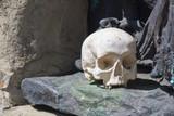 Skull at Camaldolis monastery