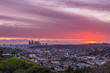 Los Angeles Pink Sunset