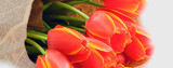 Bouquet of bright red and yellow tulips holiday spring banner background