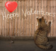 """The cat is writing on a fence """" Happy valentines day """". There is a red balloon near him. This balloon looks like a heart."""