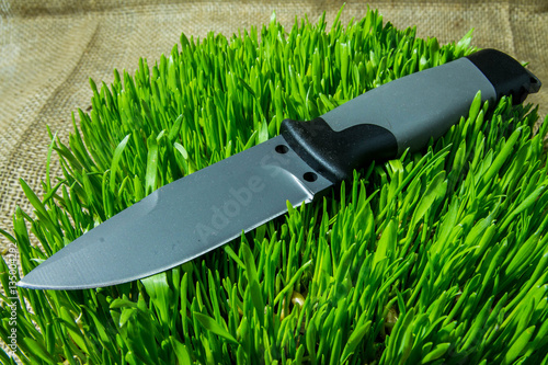 Poster Fixed knife on grass. Cold teperature.