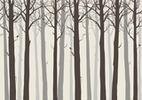 background seamless horizontal, trees with birds, brown colors, vector illustration.It can be used as wallpaper in the interior