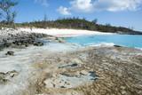 Caribbean Island Wilderness