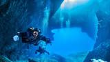 Diving Gozo Malta - 135042814