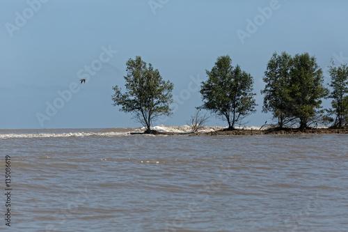 Poster Quand le fleuve Sinnamary se vide dans l'océan Atlantique en marée haute en Guya