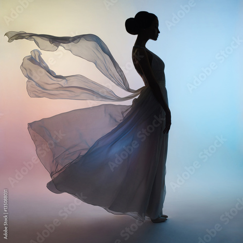 Foto op Aluminium womenART Silhouette elegant woman in blowing dress