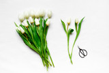 Top view of white tulips and  scissors