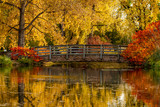 Fall Colors in Outdoor Park