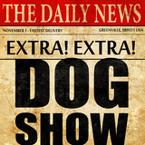 dog show, newspaper article text
