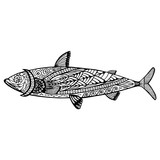 fish doodle zentangle graphic