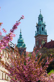 Towers of the Cathedral of Wawel.