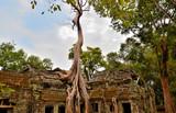 храм Та Прохм комплекса Ангкор-Ват