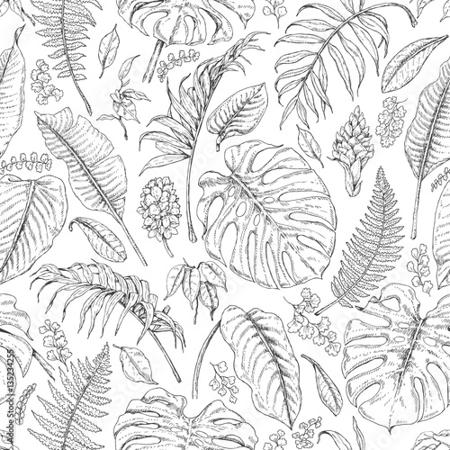 Cotton fabric Hand Drawn Tropical Plants Pattern
