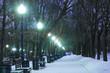 Night bulevard in Moscow