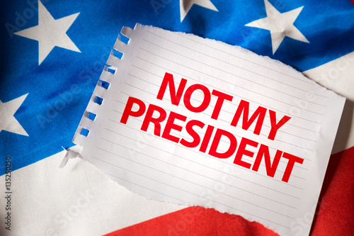 Not My President Poster