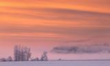 Pink fog in winter morning