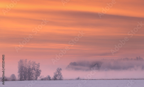 Aluminium Oranje eclat Pink fog in winter morning