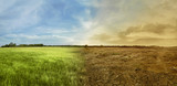 Landscape of meadow field with the changing environment - 135264435
