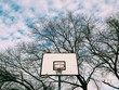 Basketball hoop shot from the low angle