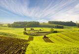 rural landscape, field, access field path, tractor plowed field