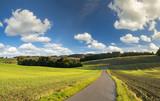 rural landscape, field, access field path