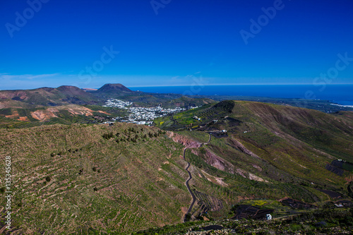 Foto op Canvas Canarische Eilanden Unusual green on the volcanic island of Lanzarote