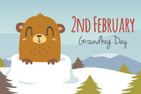 vector groundhog day illustration