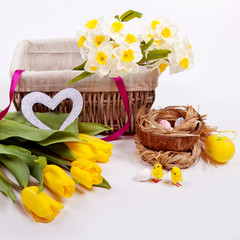 Easter background with colorful eggs and yellow tulips and daffodils in a basket on a white tree. Side view with copy space