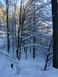 Schneelandschaft in Willingen.