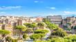 Quadro Cityscape of Rome, Italy