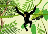 Black monkey hanging on liana on jungle background