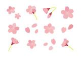 桜のイラスト セット - 135476878
